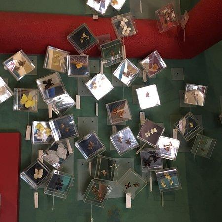 Museo Luis Mario Schneider: photo6.jpg