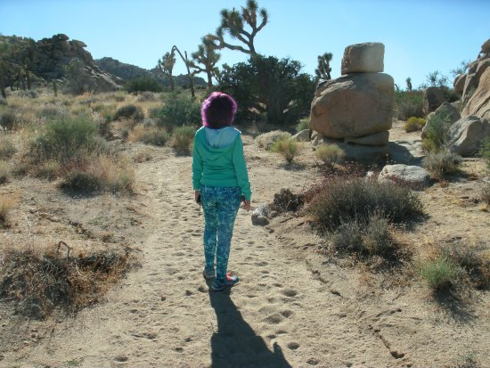 Twentynine Palms, CA: Observing rock formation on a trail in Joshua Tree National Park