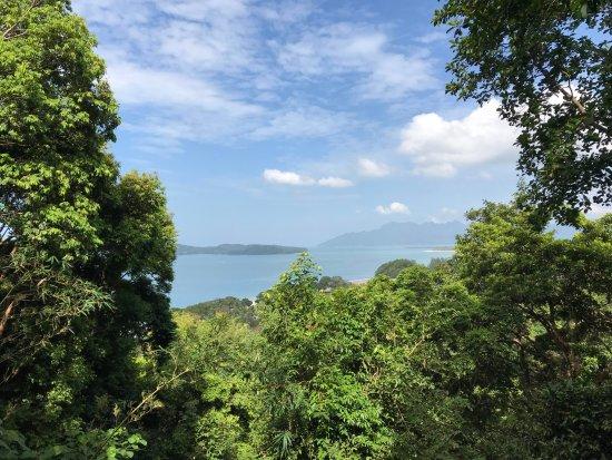 Langkawi District, Malaysia: Lush greenery