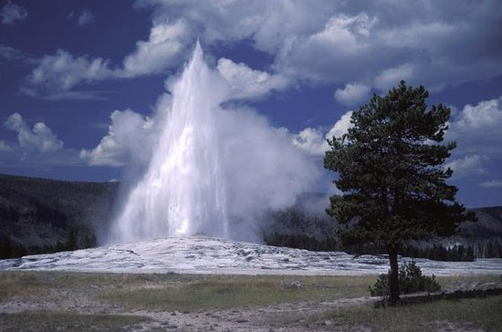 Yellowstone National Park 2-Day Tour ...