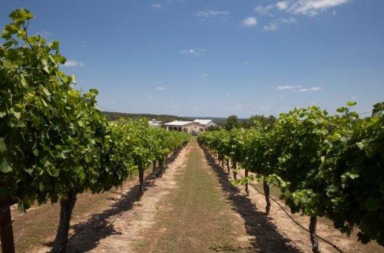 Tour de vinícolas e refeição de 3...