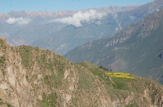 Canyon de 2 jours à Colca en bus...