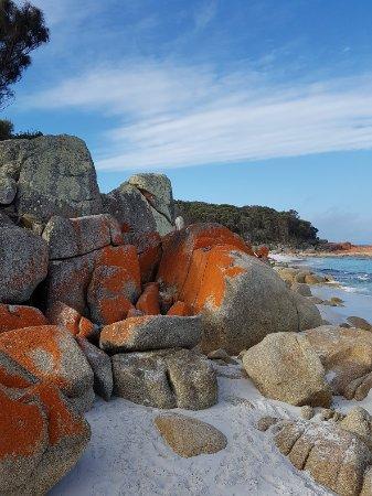 St Helens, Australia: 20171214_181546_large.jpg