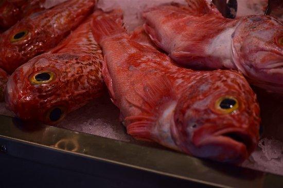 Auckland, Nueva Zelanda: Fish