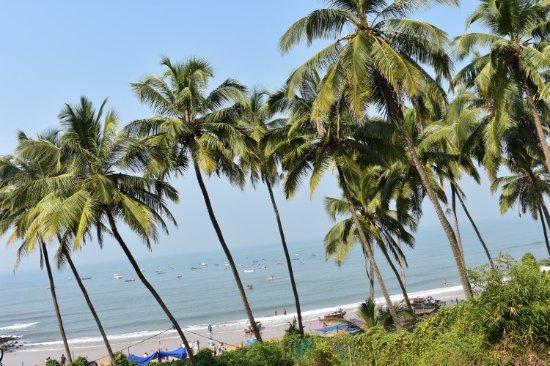Sinquerim, India: DSC_0013_large.jpg