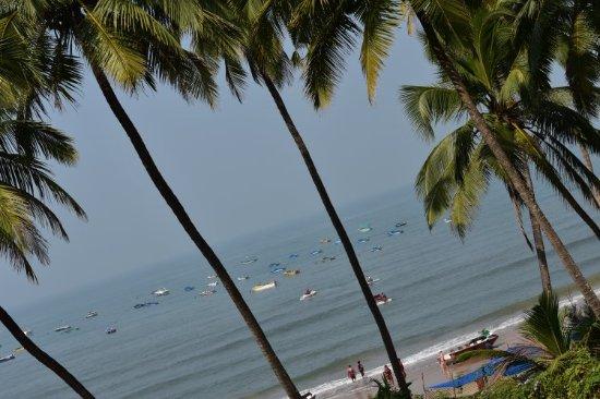 Sinquerim, India: DSC_0012_large.jpg