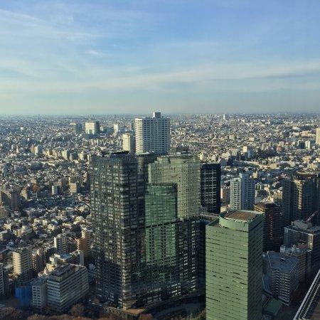 Tokyo Metropolitan Government Buildings: photo0.jpg