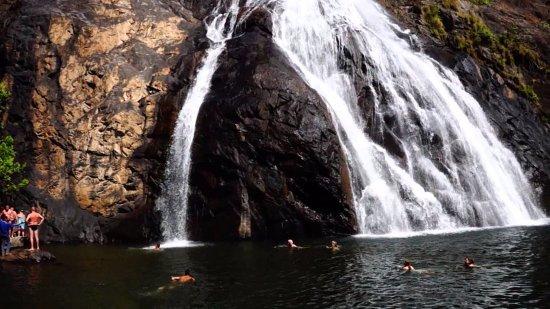 Anjuna, India: Guest enjoying swimming Dudhsagar Waterfall Trip in Goa