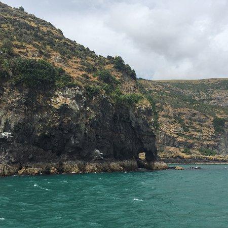 Akaroa, นิวซีแลนด์: photo3.jpg