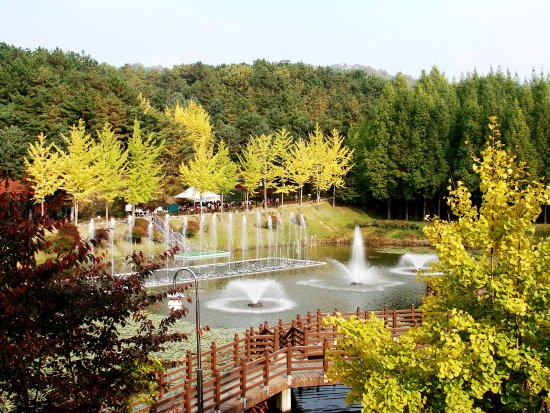 Cheongju, Corea del Sur: 가을에 연못에서 펼처지는 음악분수