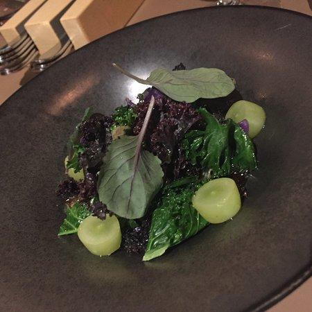 Photo of Modern European Restaurant Adam & Albin Matstudio at 16 Raadmansgatan, Stockholm 114 25, Sweden