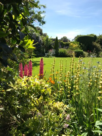 Selsey, UK: view across gardens