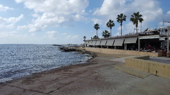 Paphos Municipal Beach: 20171215_113658_large.jpg
