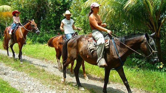 Laguna Vista Villas Corcovado Costa Rica