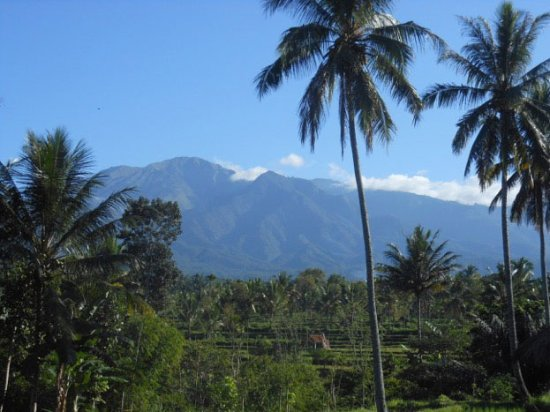 Tetebatu, Indonesia: Scenery on the walk, Mount Rinjani