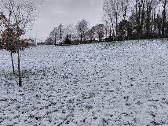 Greenville Park Belfast