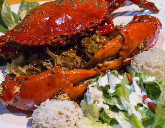 Jellyfish Restaurant Long Island
