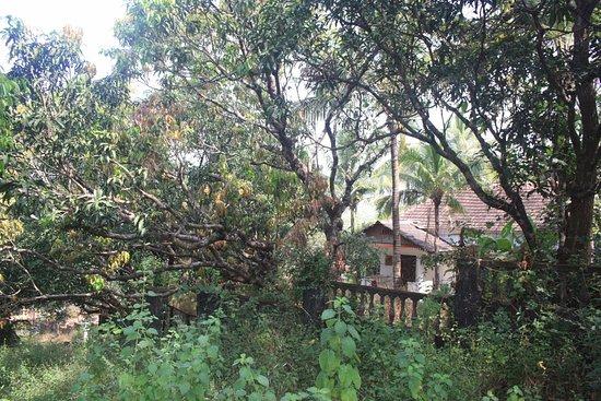 Divar Island: back in time living
