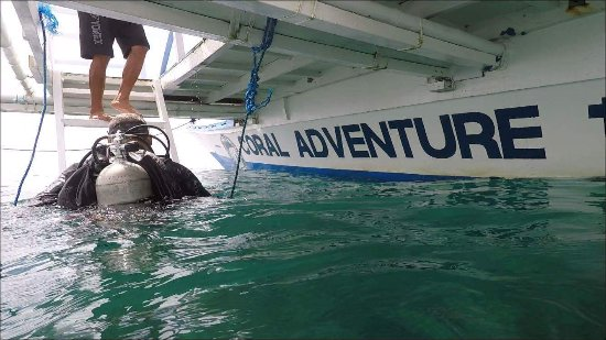 Zamboanguita, Philippines: Surfacing from an amazing dive experience.
