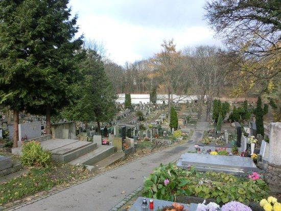 Brevnov Cemetery