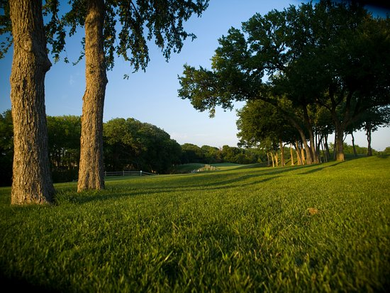 McKinney, TX: Mature trees and well defined holes at Oak Hollow!