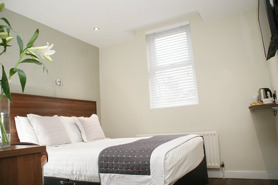 Beechlawn House Hotel Reviews