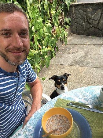 Casa Beleza: Family dog