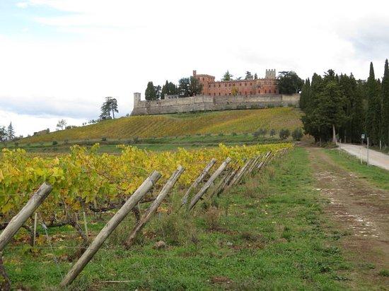 Gaiole in Chianti, Italy: The castle