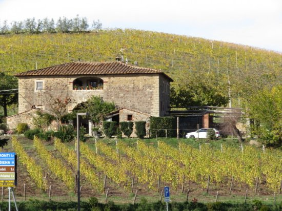 Gaiole in Chianti, Italy: The grounds