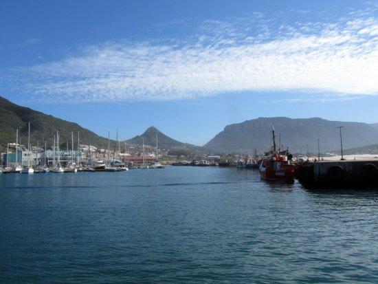 Hout Bay, South Africa: La baia
