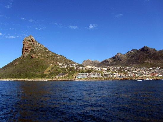 Hout Bay, South Africa: La piccola baia con la roccia Sentinella