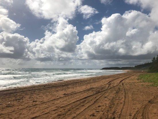 Kealia, هاواي: praia