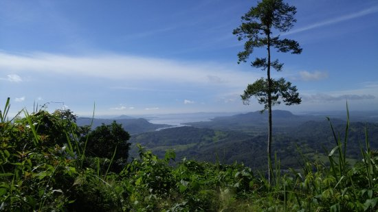 Beyond Adventure Tours: View of the Pacific Ocean from the top of a mountain on the Monkey Tour