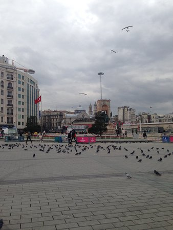 Taksim Gezi Park: birds of park
