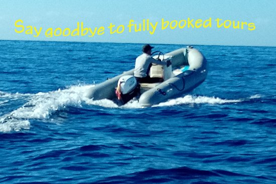 Zego Boat Rental: Take your own boat and enjoy an amazing day