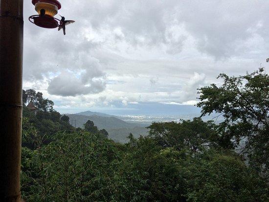 Minca, Kolombiya: View from the restaurant terrace.