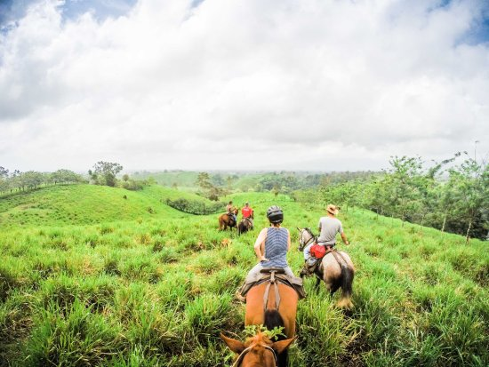 Leaves and Lizards Arenal Volcano Cabin Retreat: Horseback riding
