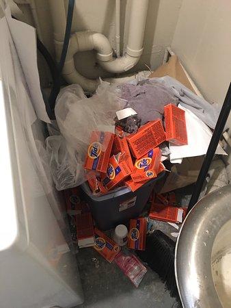 ريجينسي أون بيتشووك وايكيكي باي آوتريجر: Laundry room never cleaned
