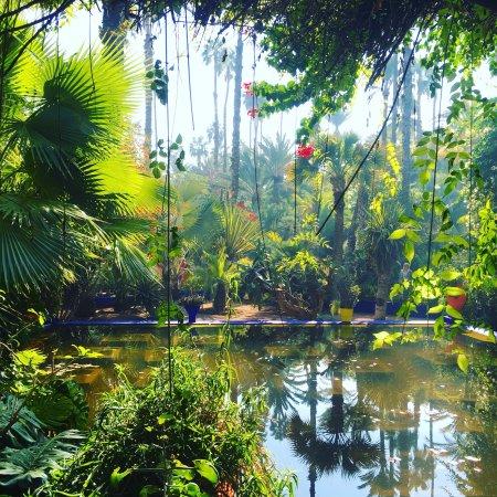 Photo de jardin majorelle marrakech for Villas de jardin seychelles tripadvisor