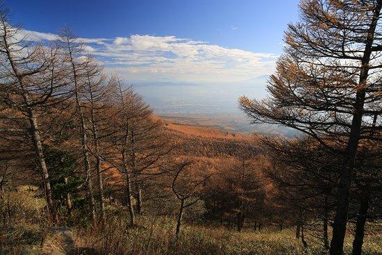 Komoro, Japan: 高峰高原