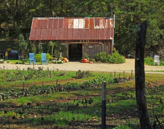 Blackberry farm thethe shed at the garden for Garden shed tripadvisor