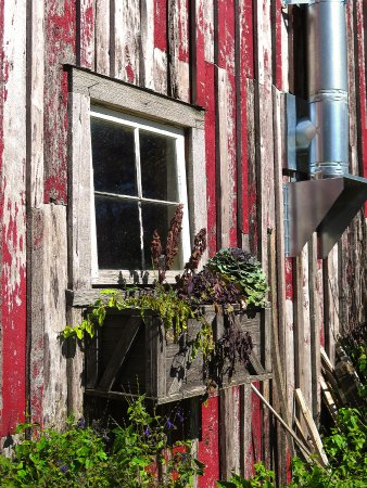Walland, TN: Blackberry Farm - TheThe Shed at The Garden