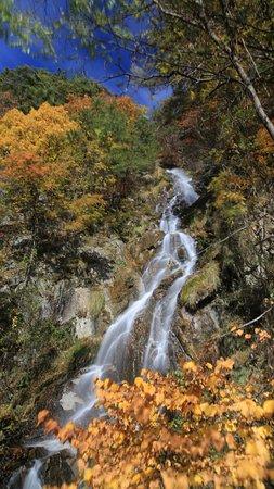 Tori Falls