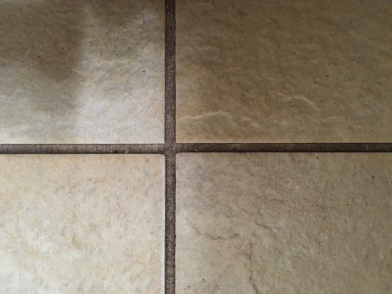 Comfort Inn and Suites Ambassador Bridge: The grout is supposed to be a light beige colour