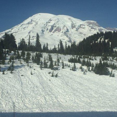 Mount Rainier: photo8.jpg