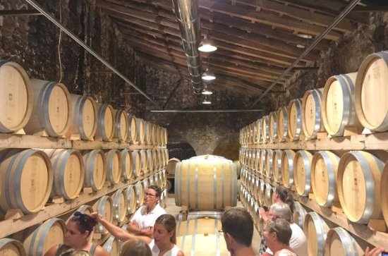 Mallorca Wine Tasting Experience for