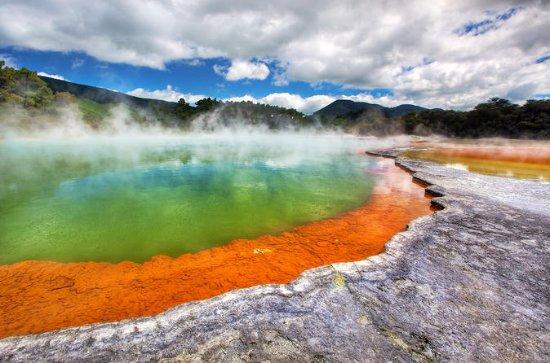 Guided Tauranga Shore Excursion to Rotorua Whakarewarewa and...