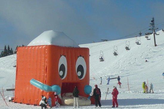 Day Trip by Bus to Hakodateyama Ski ...
