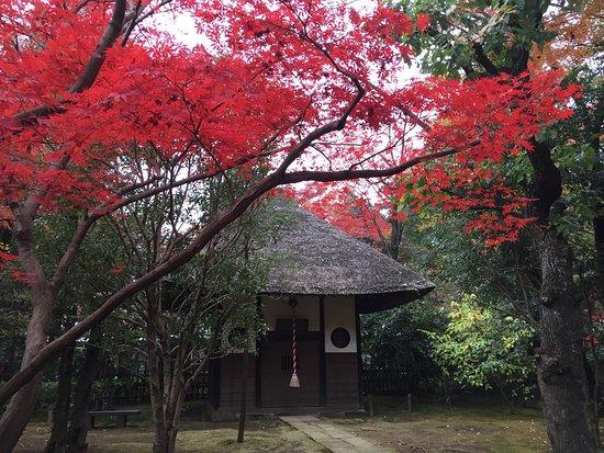 Heirin-ji Temple: photo2.jpg