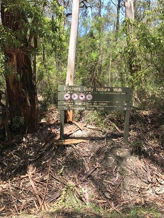 Jeeralang Junction, Australie : Morwell National Park